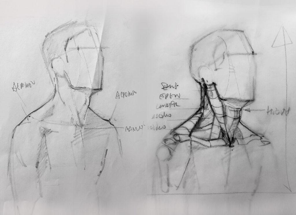 Dibujo, estudio de estructura y músculos del cuello. Diego Catalán, profesor de dibujo y pintura realista