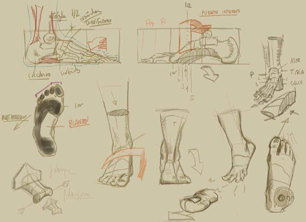 Dibujo, estudio estructural del pie. Diego Catalán, profesor de dibujo y pintura realista